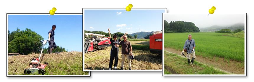 米のうまさは人にあり イメージ画像